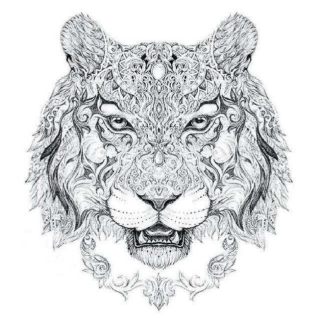 ausmalbilder erwachsene tiger  tiffanylovesbooks
