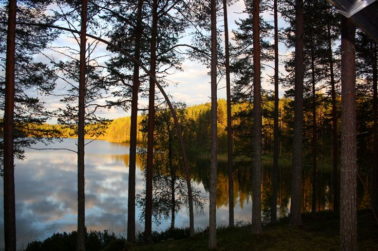 Ancient Finnish Gods and Goddesses Manifestations of Nature