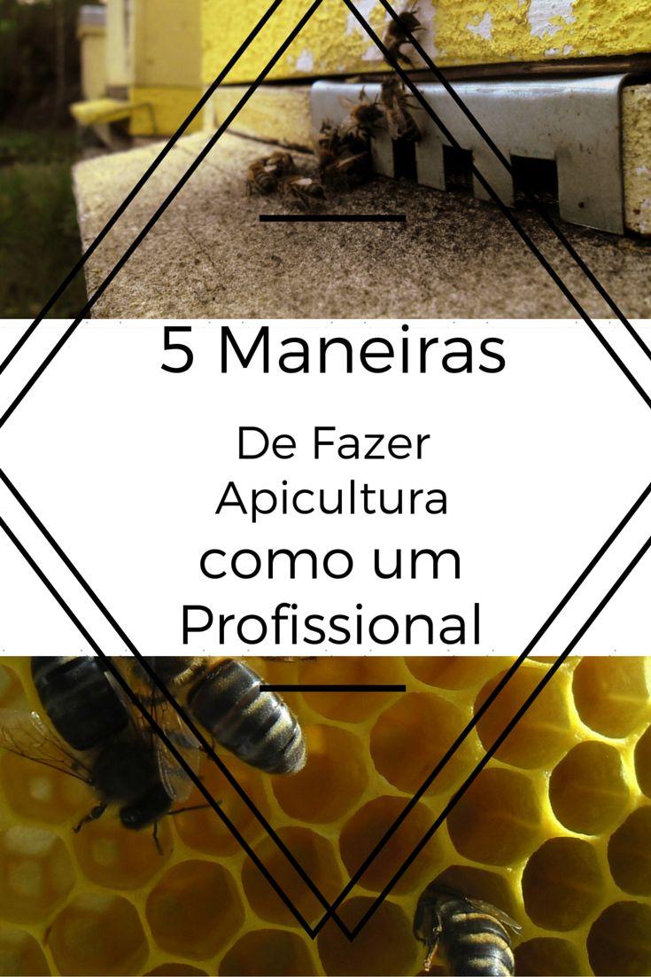 5 Maneiras de fazer apicultura como um profissional. Uma Apicultura de sucesso http://apicosta.com/comecar-um-negocio-de-apicultura-com-sucesso/