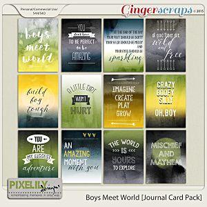Boys Meet World [Journal Card Pack]