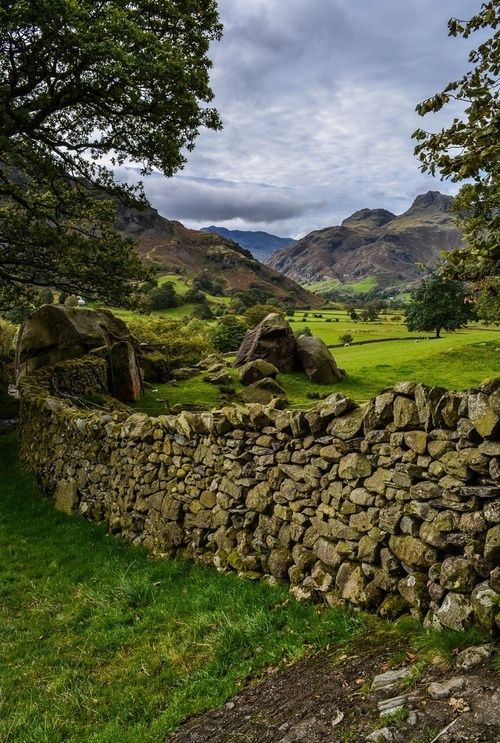 Langdale valley, Lake District, England. Reminds me of the view out the window of our hotel/motel in Ireland, only without the greyhounds.