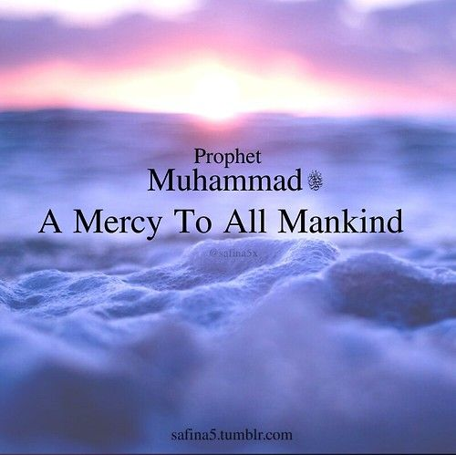The Prophet Muhammad SallAllahu Alaihi Wa'sallam Is  A Mercy To The Universe & Not Just Mankind. He Could Speak To & Would Help Animals To. The Prophet SallAllahu Alaihi Wa'sallam Is A Mercy To All Creation.