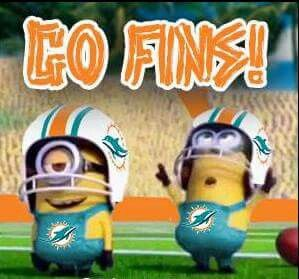 Go dolphins