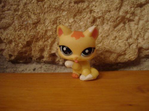 LITTLEST-PETSHOP-PET-SHOP-LPS-CHAT-cat-chartreux-rare-1821-1821