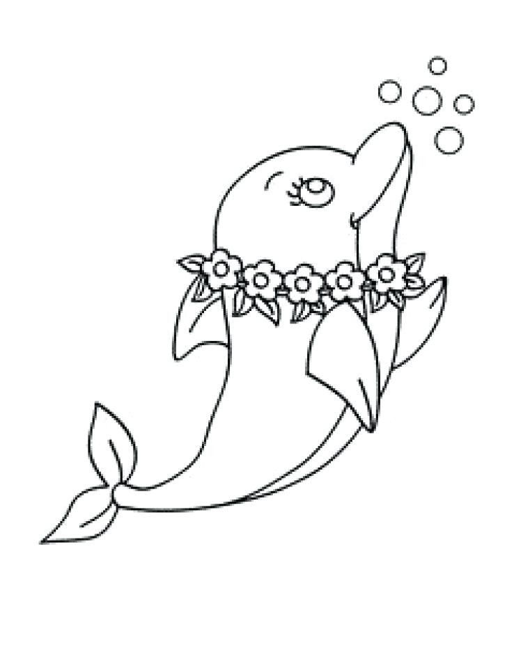 Baby Dolphin Coloring Pages Baby Dolphin Coloring Pages Coloring Pages Dolphins Dolphin In 2020 Dolphin Coloring Pages Whale Coloring Pages Colorful Drawings