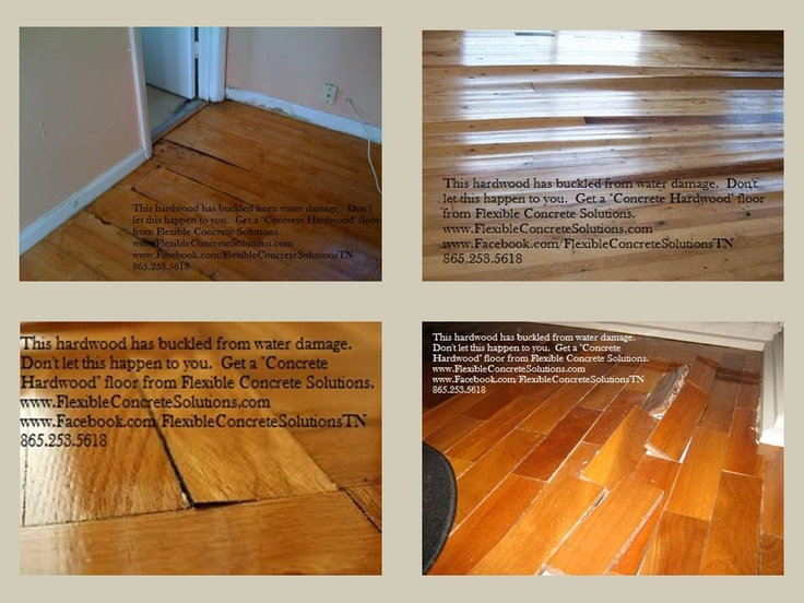 Wood flooring is easily damaged by water concrete for Hardwood floors knoxville