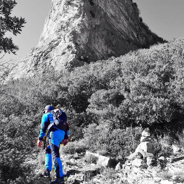 #TrigliaDiBosco #sentieri #montenerone Ecco come rilassarsi  http://bit.ly/1OjFfGh