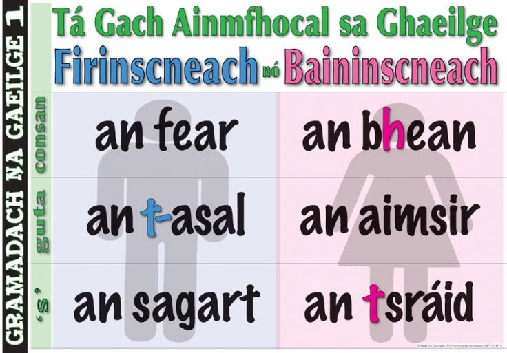 Every noun in Gaeilge is Masculine or Feminine the man / the woman the donkey / the weather the priest / the street