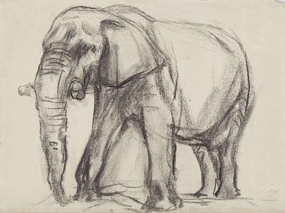 PER PALLE STORM KØBENHAVN 1910 - OSLO 1994  Elefant Kull på papir, 36x46 cm (papirmål) Monogramsignert nede til høyre: PS