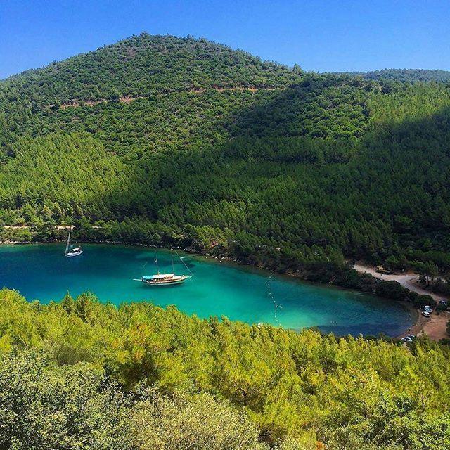 """Seeyou Turkey on Twitter: """"Paradise Bay, Muğla, ⚓ #cennetkoyu (Photographer: bodrumtadinda) https://t.co/aW8F4DZslz"""""""