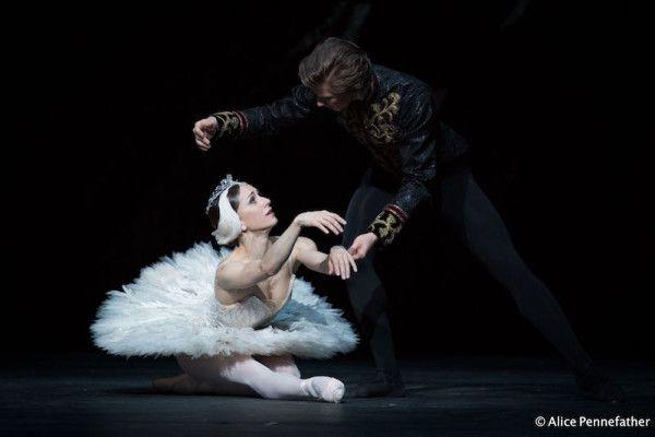 The Royal Ballet S Swan Lake A Photo Gallery