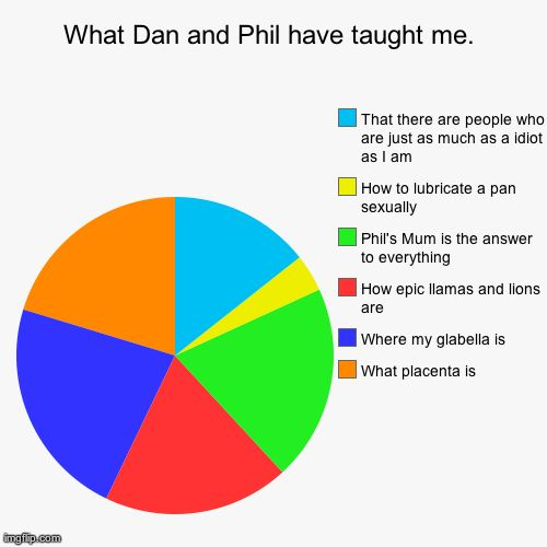 dan and phil memes   What Dan and Phil have taught me. What placenta is Where my…