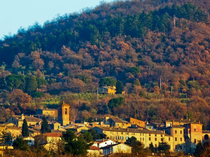 Paciano (390 m circa) - sullo sfondo il bosco che ricopre le pendici del Monte Petrarvella (630 m circa). Numerosi sentieri, da percorrere a piedi, in mountain bike o a cavallo, si sviluppano da Paciano verso le colline circostanti, con vista sui laghi della Valdichiana Romana (Trasimeno, Chiusi, Montepulciano), sui monti Cetona ed Amiata, sulla valle del Nestore.