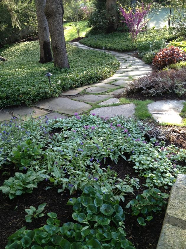 Katie's Shade garden