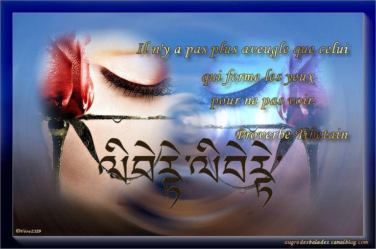 Il n'y a pas plus aveugle que celui qui ferme les yeux pour ne pas voir (Proverbe Tibétain)