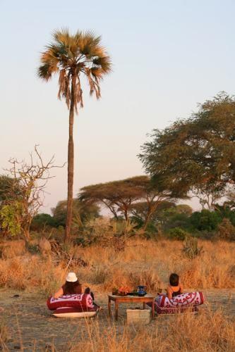 Katuma bush #hangouts | Holidays in Tanzania | Mbali Mbali Lodges and Camps