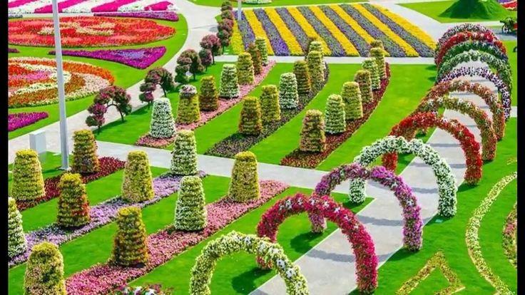dubai miracle garden video - Google Search