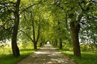 Rycerska Hotel, Nocleg MIĘDZYNARODOWY SZLAK KRAKÓW-MORAWY-WIEDEŃKraków-Morawy-Wiedeń Greenways to szlak dziedzictwa p