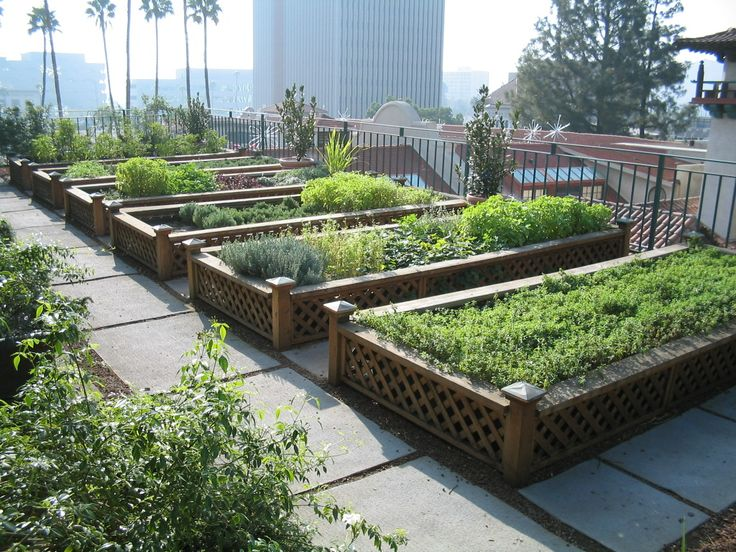 urban_agriculture