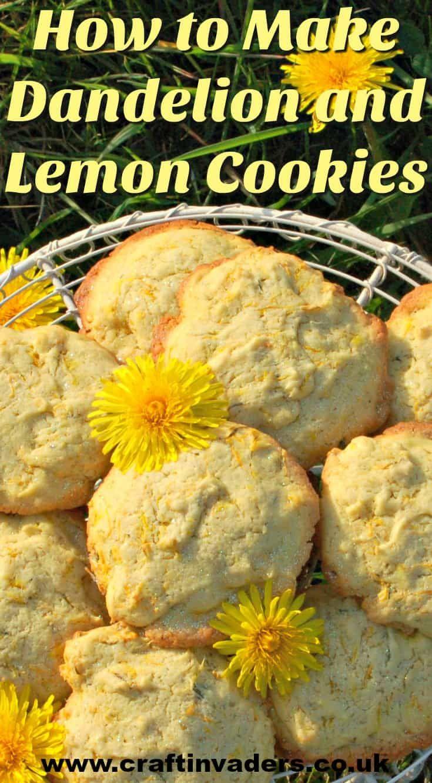 How To Make Delightful Dandelion Lemon Biscuits Dandelion Recipes Lemon Biscuits Food Recipes