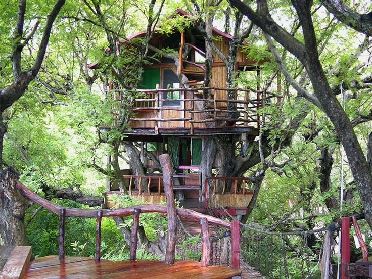 Sanya Nanshan treehouse resort and beach club, Hainan Island, China