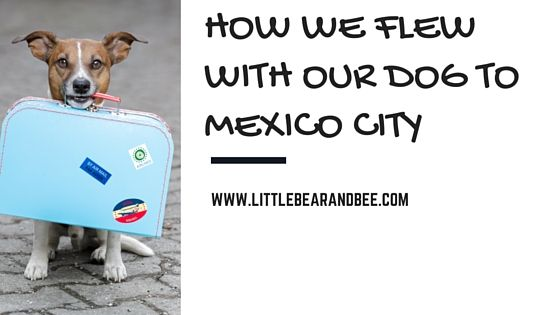 Prior to our trip to Mexico City, I never would have dreamed of bringing our dog, Maebee, on a domestic trip that required flying, much less on an international trip that involved flying. However, when we were presented with the opportunity to spend two monthsin Mexico City for my husband's work, we refused to leave …