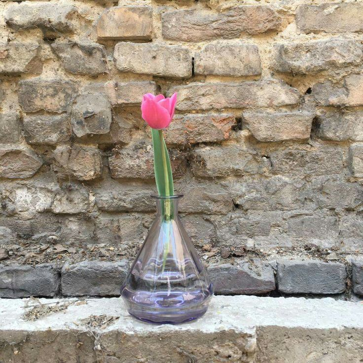 Brick and tulip