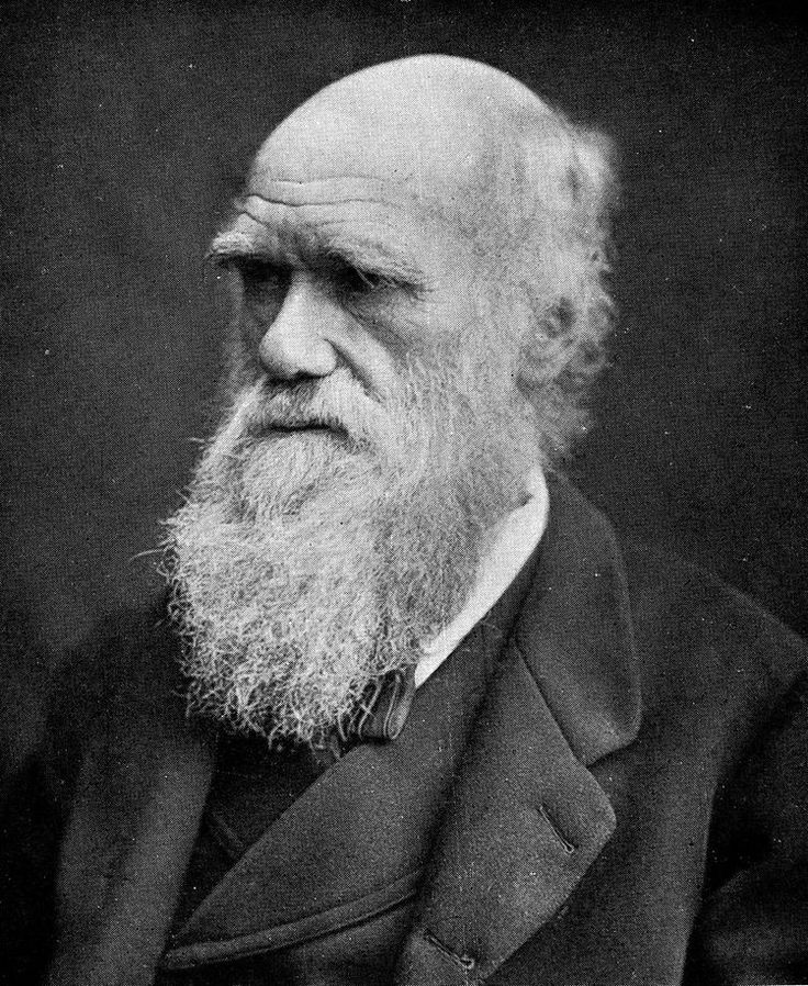 Darwin Quotes: Best 20+ Who Was Charles Darwin Ideas On Pinterest