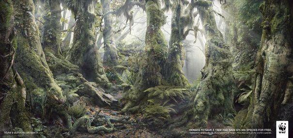 """La impresión de la vegetación tropical, """"oculta"""" las imágenes de los animales que viven en la selva::..*•#~~$??*"""