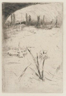 1883: Freer begins collecting fine art prints by contemporary European artists.   Swan and Iris; James McNeill Whistler (1834–1903); United States, ca. 1883; etching on paper; Gift of Charles Lang Freer; F1883.1