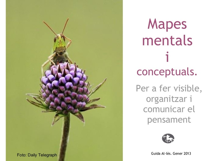 mapes-mentals-i-conceptuals by Guida Allès Pons via Slideshare
