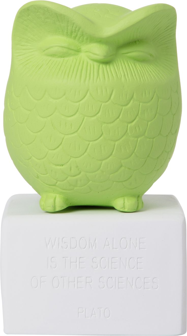 Owl Medium Lime