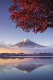 Japan, Fuji - Hakone - Izu National Park, Mt Fuji and Kawaguchi Ko Lake Photographic Print by Michele Falzone