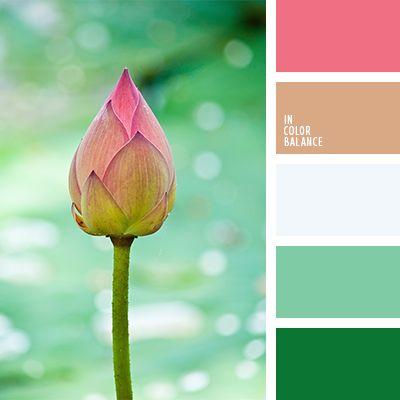 beige y rosado, beige y verde, color flor de loto, matices del verde lechuga, melocotón y rosado, rosado y beige, selección de colores para una boda, tonos suaves para una boda, tonos verdes, tonos verdes suaves, verde suave y rosado, verde y beige, verde y rosado.