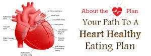 The primary step towards heart health is a healthy meal plan which contains all of the nutrients, vitamins and minerals that your body, especially your heart needs to function, coupled with light exercise and an overall good lifestyle.