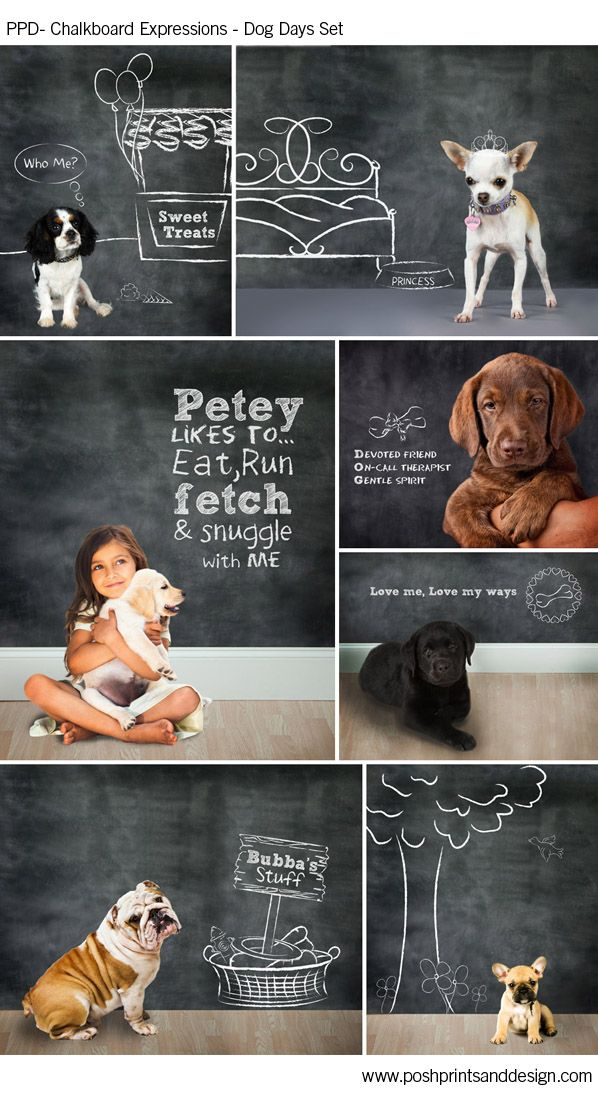 Chalkboard Expressions Dog Days Template