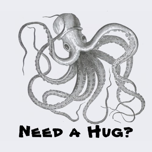 1000  images about octopus on pinterest