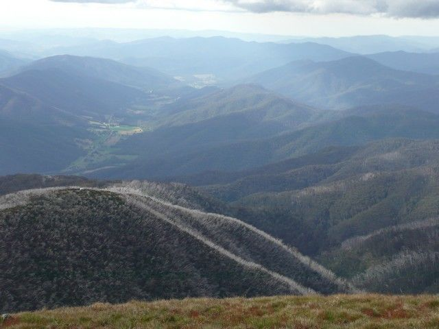 Hiking in the Victorian Alps