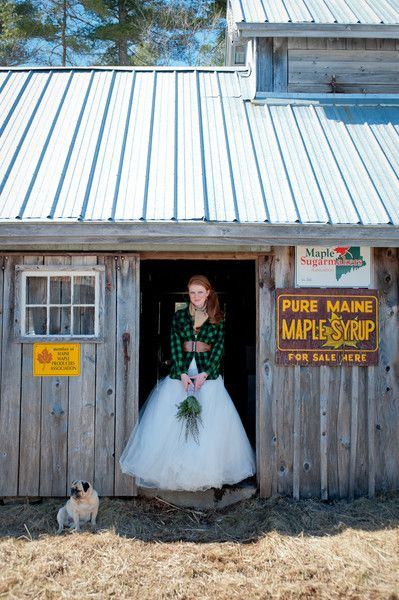 25 best ideas about weddingwire find a couple on pinterest love a winter bride i maine seasons events i see more weddingwire junglespirit Gallery