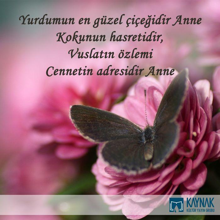 Anneler gününüz kutlu olsun…  Yurdumun en güzel çiçeğidir Anne Kokunun hasretidir, Vuslatın özlemi Cennetin adresidir Anne #annelergunu #cicek #kitapkaynagi #kelebek #sefkat