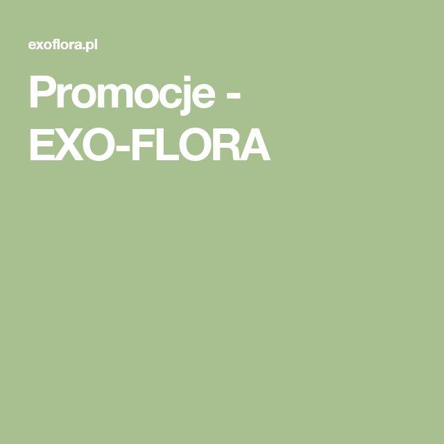 Promocje - EXO-FLORA