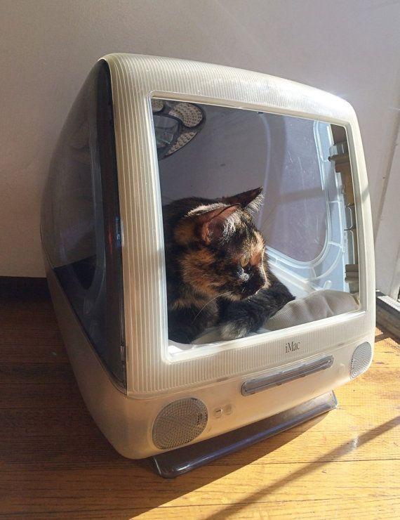 Home sweet home: die 10 schönsten Katzenhäuschen zum Selbermachen! - Seite 4 von 10 - DIY Bastelideen