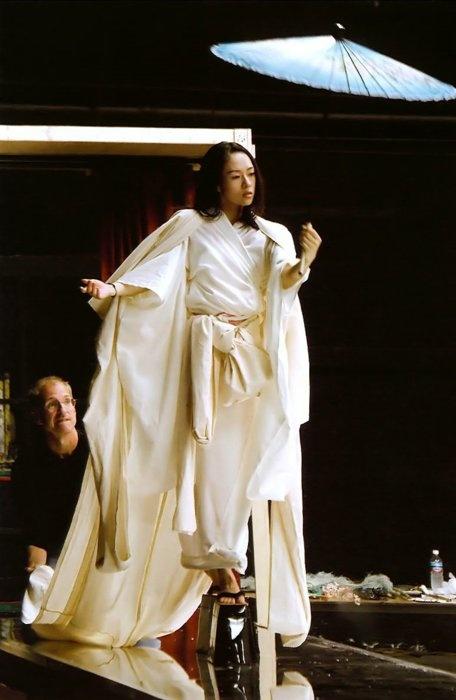 Zhang Ziyi in Memoirs of a Geisha