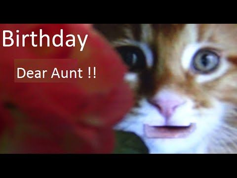 Happy Birthday my Dear Aunt