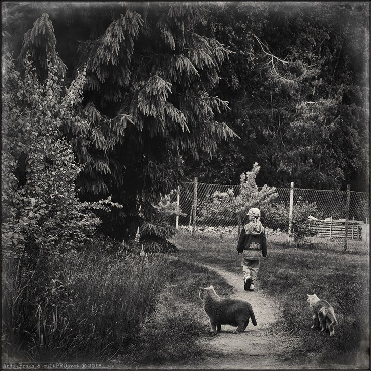 photo: The Stalkers (The Road We Must Travel) | photographer: Andy Prokh | WWW.PHOTODOM.COM