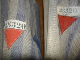 """""""All of the girls in the block spoke Polish, and most wore the red triangle of political prisoners"""" (p. 159). Kasia and her family were political prisoners because they were from Poland so they wore these triangles on their sleeves at the concentration camp."""