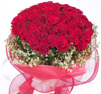 flowers to Delhi, Flowers delivery in Delhi, gifts to Delhi, Cake delivery in Delhi, midnight Flowers delivery in Delhi, express gifts delivery in Delhi, same day Flowers delivery in Delhi, fruits basket delivery in new delhi, flowers to New Delhi, Same day flowers delivery in New Delhi, gifts to New Delhi, Cakes to New Delhi, unique gifts to new delhi, gifts to noida, Flowers to Noida, www.flowergalaxyindia.com, flowergalaxyindia.com, Flower Galaxy India, Flower Galaxy