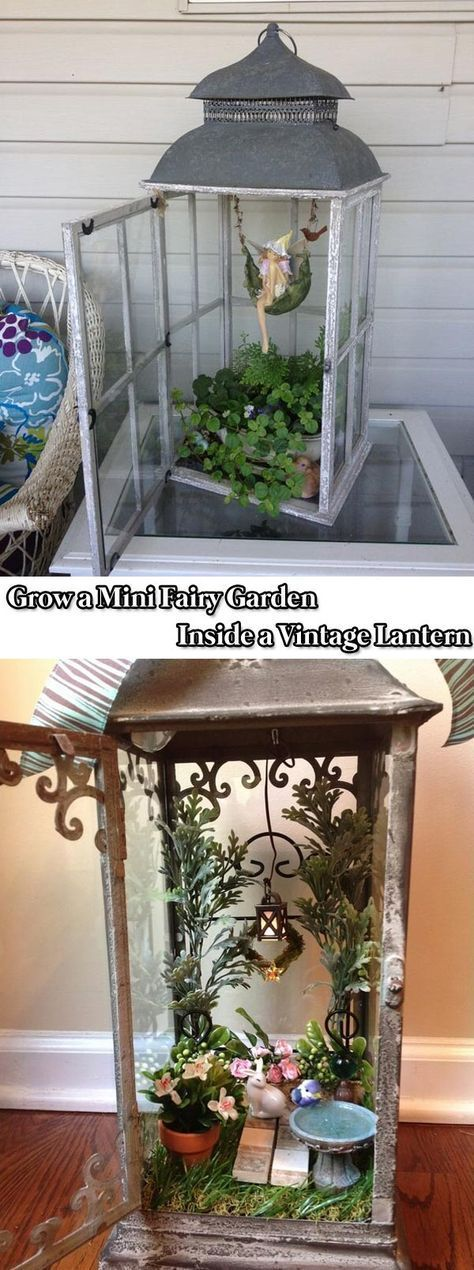 Grow a Mini Fairy Garden Inside a Vintage Lantern - 17 Stunning Fairy Gardens Created by Recycled Things #minigardens