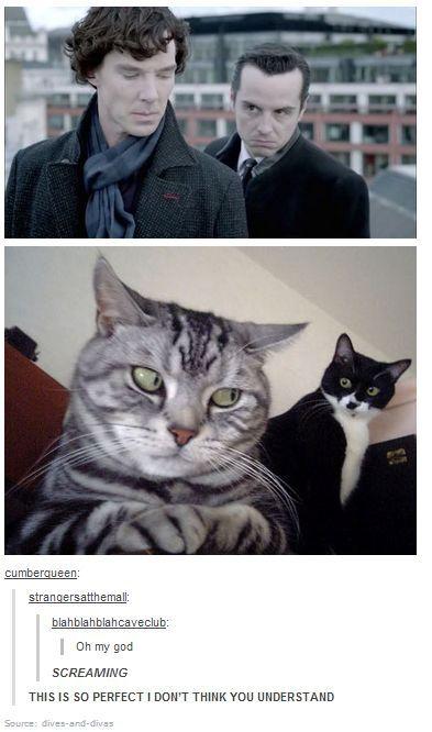 BBC Sherlock Holmes Jim Moriarty