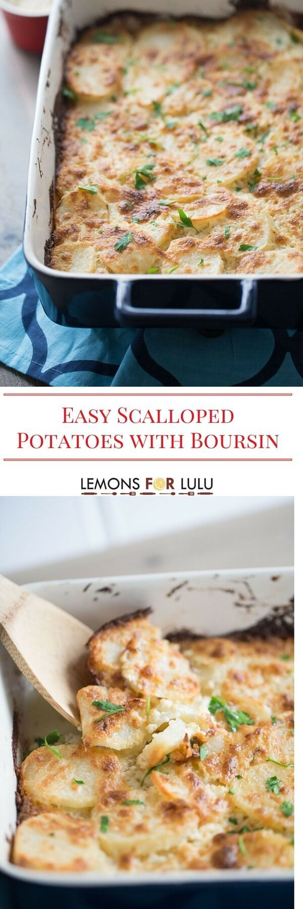 You can't go wrong with potatoes as a side dish, but this easy scalloped potato recipe is exceptionally delicious!  Thinly sliced potatoes are covered in a herb flavored cheese sauce that is so rich and creamy!